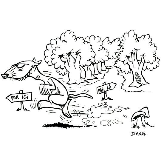 coloriages et dessins pour les enfants sur le thème furet