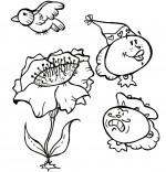 Comptine Gentil coquelicot, le coquelicot et l'oiseau