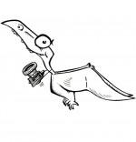 Coloriage Dinosaure, le ptérodactyle de nos reportages pour enfants