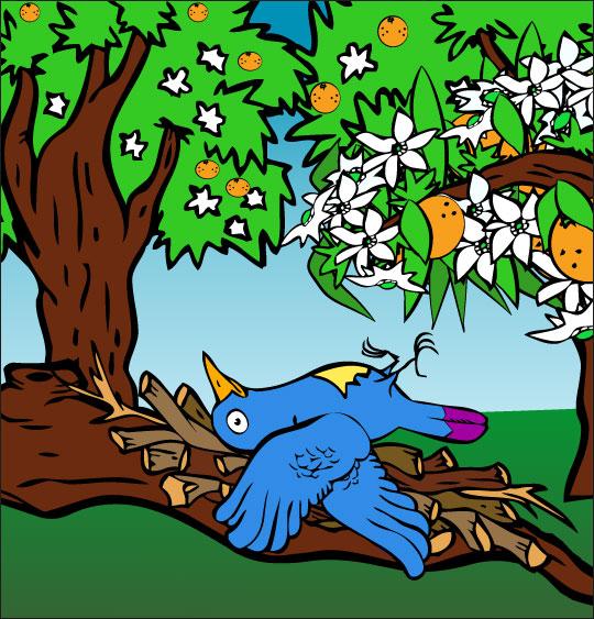 Dessin chanson À la Volette, l'oiseau est tombé, il est blessé, catégorie Chanson pour enfants À la Volette