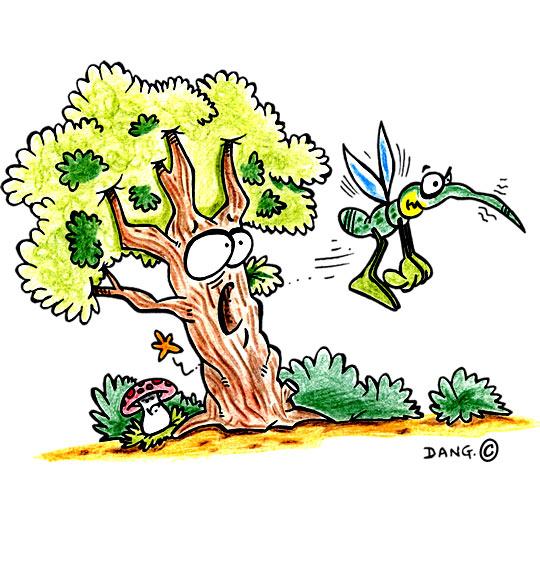 Dessin Petit moustique pique l'arbre, catégorie Chanson pour enfants Petit moustique