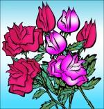 Dessin Chanson À la Claire Fontaine, des roses en bouquet