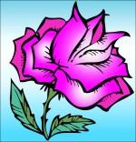 Chanson À la Claire Fontaine, une rose splendide