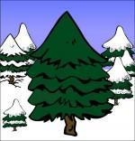 Dessin Chanson de Noël Mon beau sapin, le sapin au milieu de la forêt