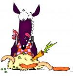 Illustration Chanson Le Loup Sympa, le loup mange une choucroute