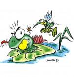 Dessin Chanson Petit moustique pique le crapaud