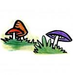 Illustration Chanson Promenons-nous dans les bois, trois champignons