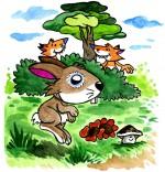 Illustration Comptine Un petit lapin, deux renards observent Petit Lapin