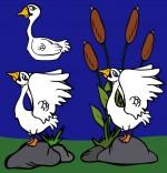 Illustration Conte Le vilain petit canard, 2 cygnes dans la mare
